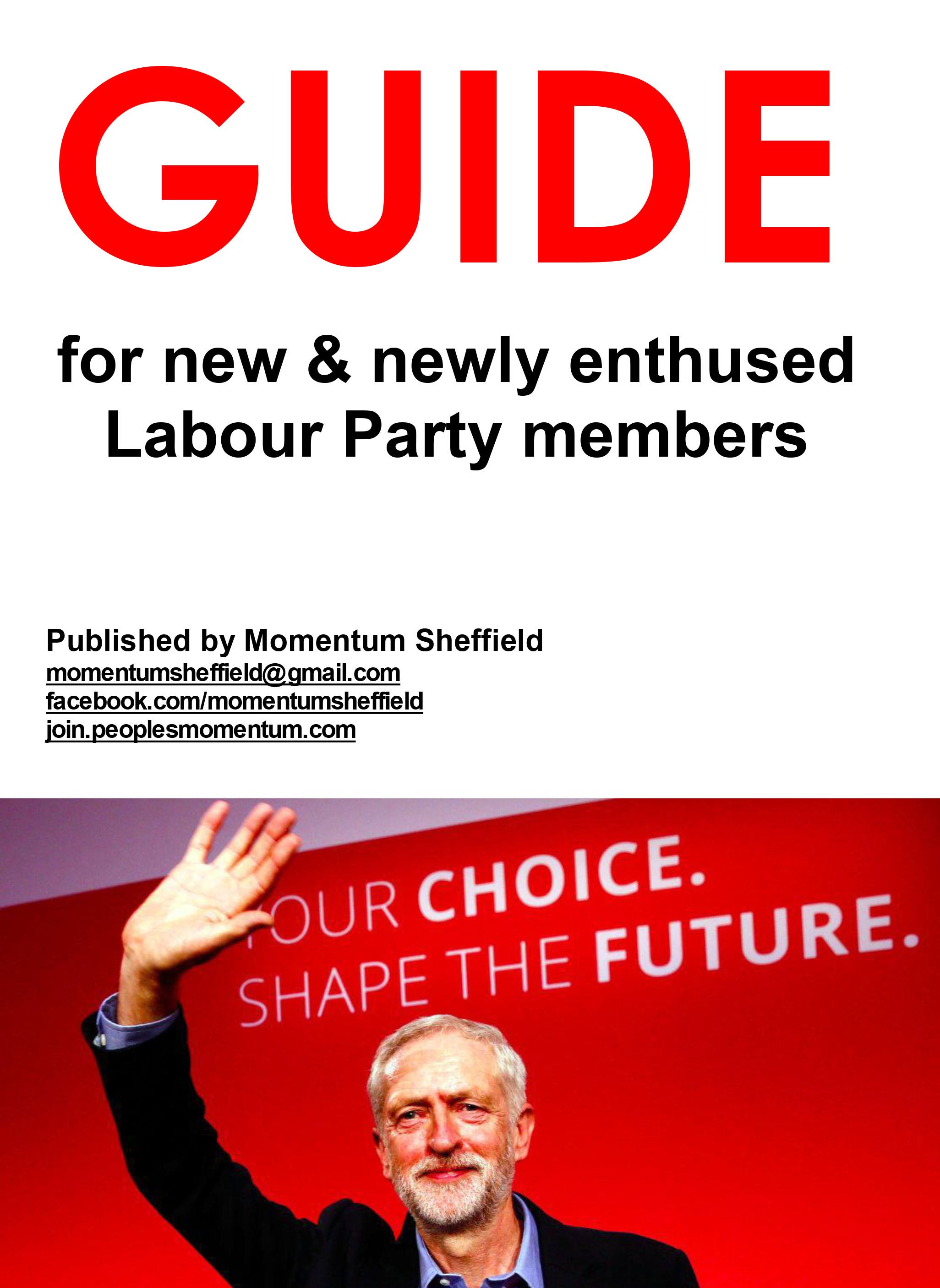 337725670-Momentum-Sheffield-Guide-for-New-Labour-Members.pdf